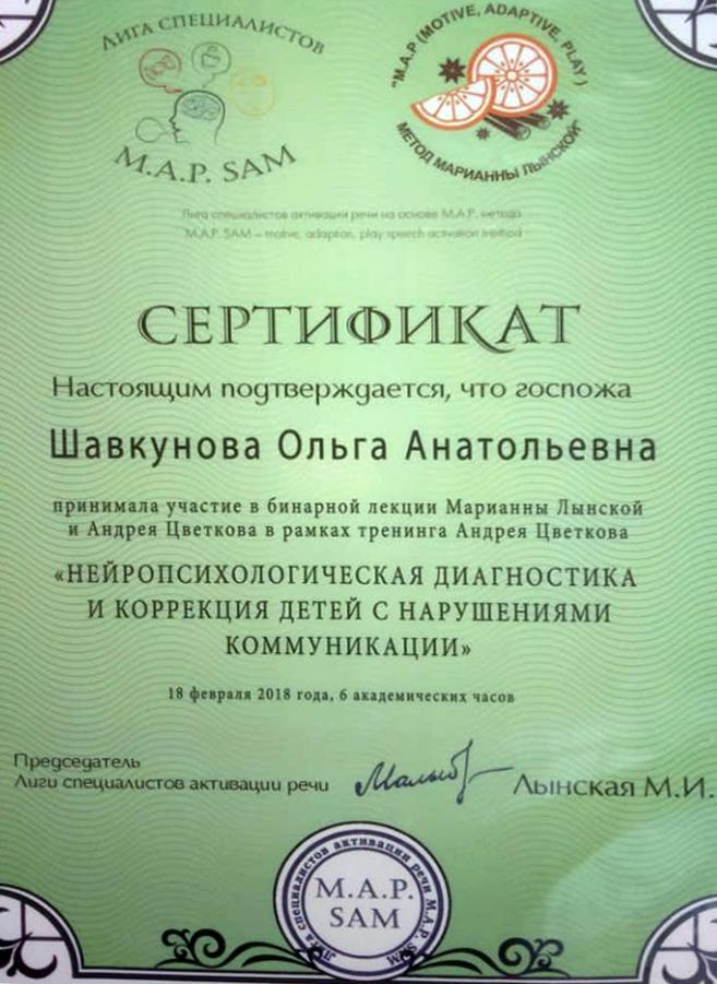 Шавкунова 2